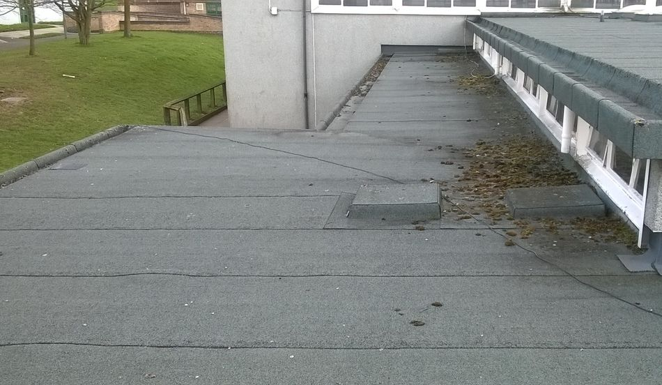 A School Flat Roof - How do you know if you need work done?